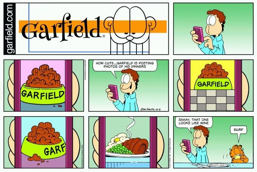 garfieldz56