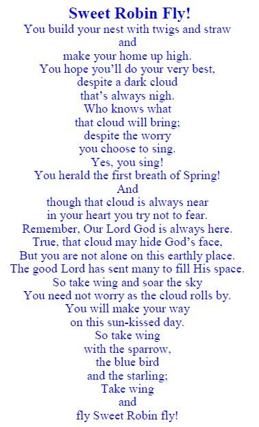 Robin Poem