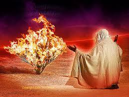 Moses-flaming-bush